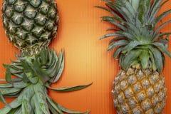 Frische organische Ananas, tropische Frucht Stockfotografie