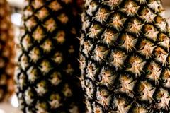 frische organische Ananas stockbilder