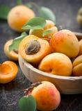 Frische organische Aprikose Stockbilder
