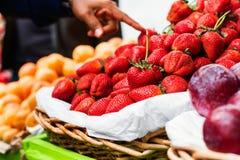 Frische organische Erdbeeren Lizenzfreies Stockfoto