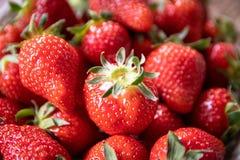 Frische organische Erdbeeren in einer keramischen Platte lizenzfreies stockbild