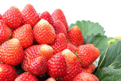 Organische Erdbeeren im Korb Lizenzfreie Stockbilder