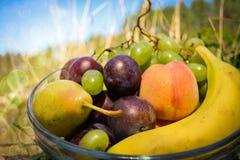 Frische organische Früchte auf der Platte Stockbilder