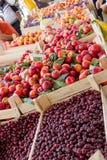 Frische organische Frucht von Serbien Stockfotos