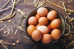 Frische organische Hühnereien Stockbilder