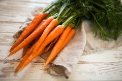 Frische organische Karotte Stockbilder
