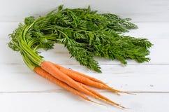 Frische organische Karotte lizenzfreie stockfotografie
