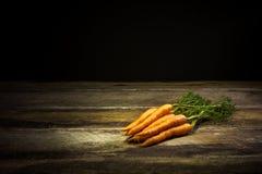 Frische organische Karotten Stockfoto