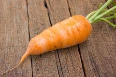 Frische organische Karotten lizenzfreie stockfotografie