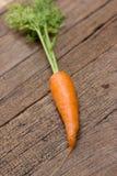 Frische organische Karotten stockfotos