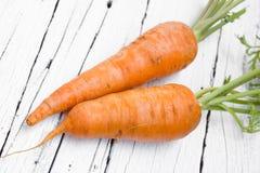 Frische organische Karotten lizenzfreie stockfotos