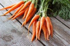 Frische organische Karotten auf hölzernem Hintergrund, selektiver Fokus Lizenzfreie Stockfotos