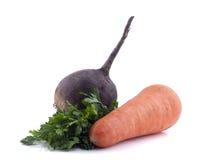 Frische organische Karotten und Rote-Bete-Wurzeln lizenzfreies stockfoto