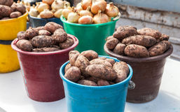 Frische organische Kartoffeln der neuen Ernte zum Verkauf Stockbild