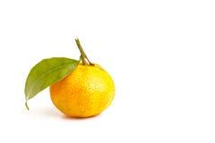 Frische organische Klementinen Stockfoto
