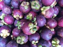 Frische organische Mangostanfrucht Lizenzfreie Stockfotografie