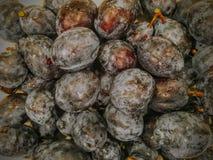 Frische 100% organische Pflaumen eben gewaschen und Trocknen Lizenzfreie Stockbilder