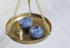 Frische organische reife Blaubeeren auf der Skala Stockfoto