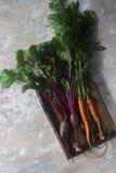 Frische organische rote Rübe und Karotte in der Holzkiste, gesunder Lebensstil, Herbsternte, rohes Gemüse, Draufsicht Stockfotografie