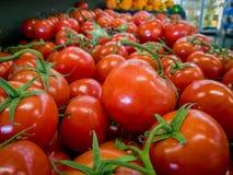 Frische organische rote Tomaten an einem Speicher Stockbild