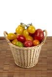 Frische organische Tomaten Stockbild