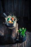 Frische Ostereier mit Heu und Federn Lizenzfreie Stockfotos