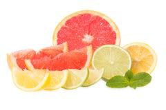 Frische Pampelmusen, Kalke, Zitronen und Minze Stockfotografie