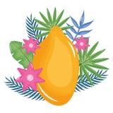 Frische Papaya exotisch mit Blumendekoration vektor abbildung