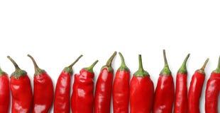Frische Pfeffer des roten Paprikas auf weißem Hintergrund, Draufsicht lizenzfreies stockbild
