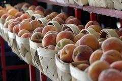 Frische Pfirsiche Lizenzfreie Stockbilder