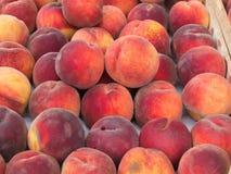 Frische Pfirsiche an einem Landwirt-Markt Stockfotos