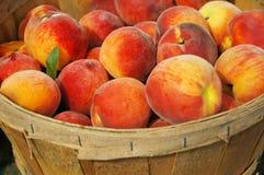 Frische Pfirsiche im hölzernen Korb Stockbilder