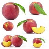 Frische Pfirsiche mit Blatt Stockbilder