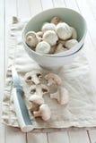 Frische Pilze Lizenzfreie Stockbilder