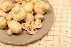 Frische Pilze Lizenzfreie Stockfotografie
