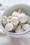 Frische Pilze schließen oben Lizenzfreie Stockfotografie