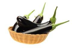 Frische purpurrote Aubergine Lizenzfreie Stockfotos