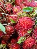 Frische Rambutanfrüchte mit Blättern lizenzfreie stockbilder