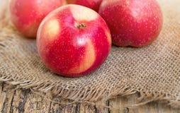 Frische reife Äpfel auf einem hölzernen Hintergrund, auf Segeltuch Lizenzfreie Stockfotografie