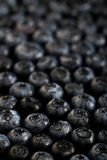 Frische reife Blaubeeren kopieren dunkle Fotomakronahaufnahme Stockbilder