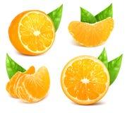 Frische reife Orangen Lizenzfreies Stockfoto