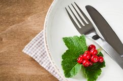 Frische reife organische rote Johannisbeere in der Platte Lizenzfreies Stockfoto