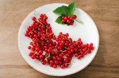 Frische reife organische rote Johannisbeere in der Platte Lizenzfreie Stockbilder