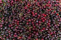 Frische reife perfekte Kirsche - Lebensmittel-Feld-Hintergrund Stockfotos