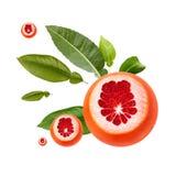 Frische reife rote Pampelmuse mit grünen Blättern Rot schnitt die lokalisierte Zitrusfrucht Stockfotografie