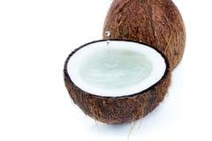 Frische reife tropische Kokosnüsse mit Wasser lokalisiert auf Weiß Stockbild