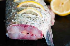 Frische rohe Fische mit Zitrone stockfotos