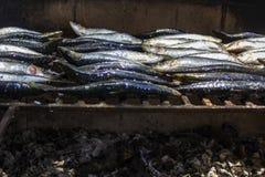 Frische rohe Sardinen bereiteten sich auf den Holzkohle Grill vor portugal lizenzfreie stockfotografie