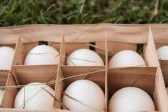 Frische rohe weiße Hühnereien in einer Holzkiste auf grünem Gras 10 Stockfoto