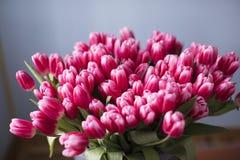 Frische rosa Tulpe blüht Blumenstrauß Kopieren Sie Platz lizenzfreie stockfotografie